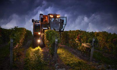 harvester at night